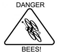 cropped-Dangerbees-Logo2-240.jpg